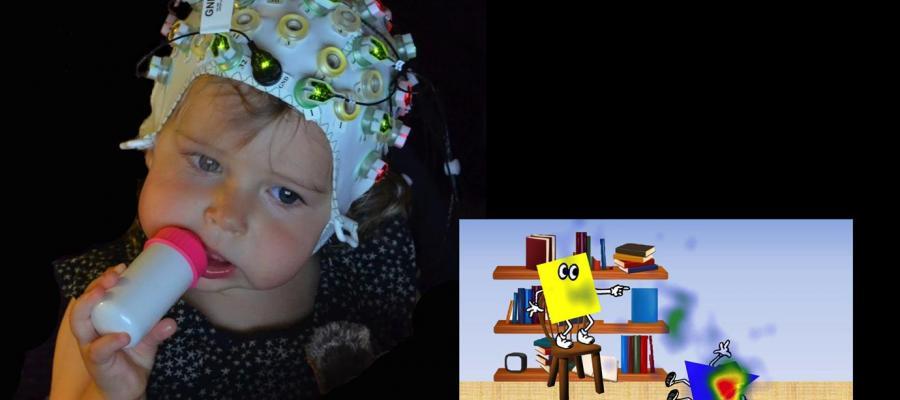 Testing neural responses in babies